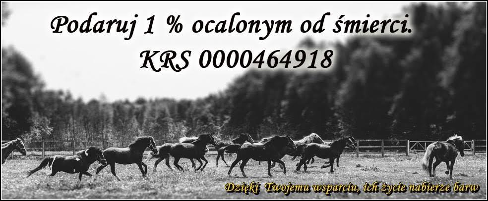 d30b46fd-cc03-4ce2-9cc9-34e165bda91f